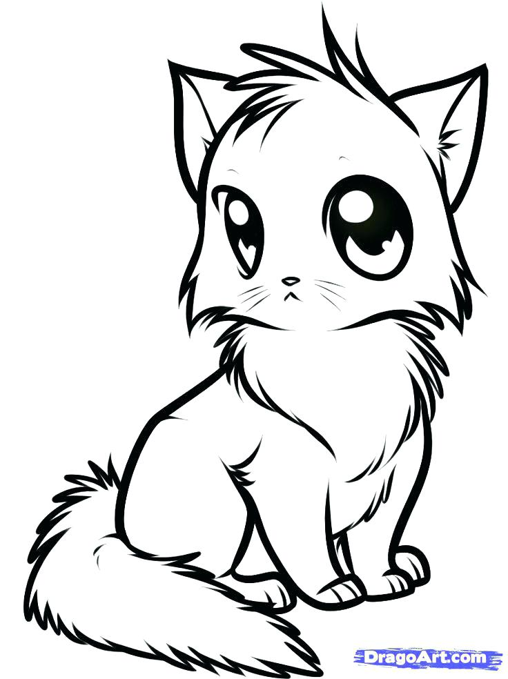 Cat Coloring Pages At Getdrawings Com Free For Personal Use Cat