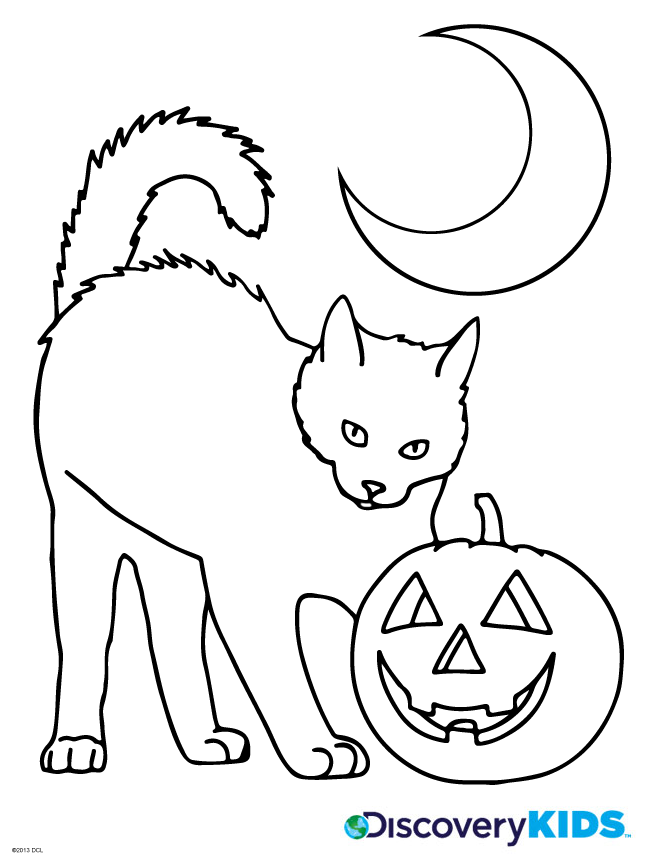 648x864 Halloween Cat Coloring Page