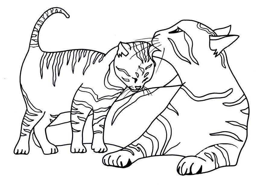 872x618 Images Of Cats To Colour Free Printable Cat Coloring Pages
