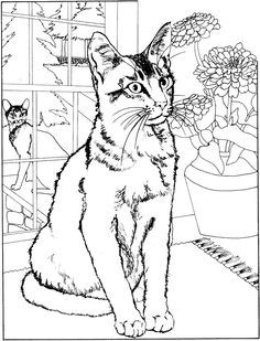 Cat Coloring Pages Adults
