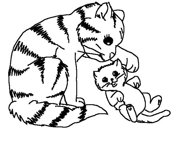 600x500 Coloring Pages Cat
