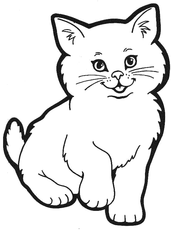 552x761 Fresh Design Cat Coloring Pictures Printable Pages Preschool
