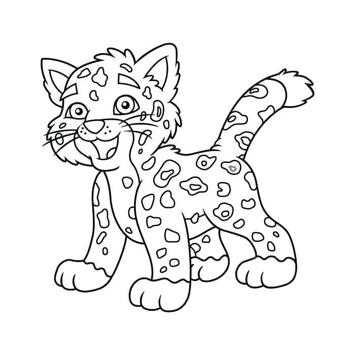 700x700 Jaguar Coloring Sheet Jaguar Coloring Pages For Preschoolers Baby