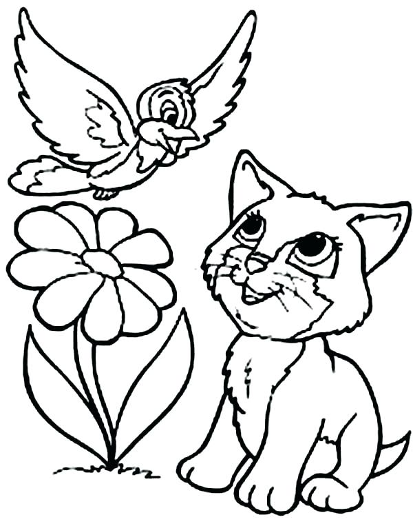 600x763 Cat Coloring Pages Cat Color Coloring Page Hello Kitty Coloring