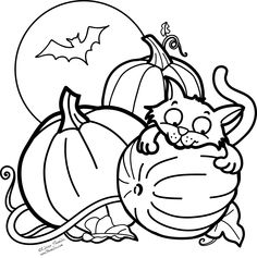 236x237 Halloween Cat Coloring Pages Color Bros