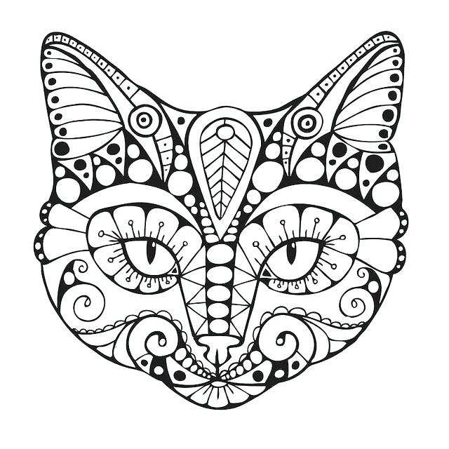 640x640 Cat Coloring Pages Simple Cat Coloring Pages Cat Colouring