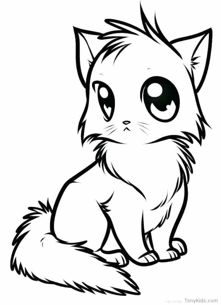 736x1014 Cat Coloring Pages Online
