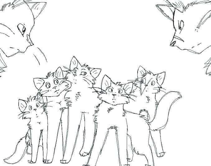 678x534 Cat Coloring Pages Online