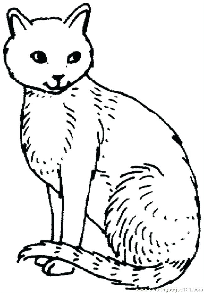 650x932 Free Printable Cute Cat Coloring Pages