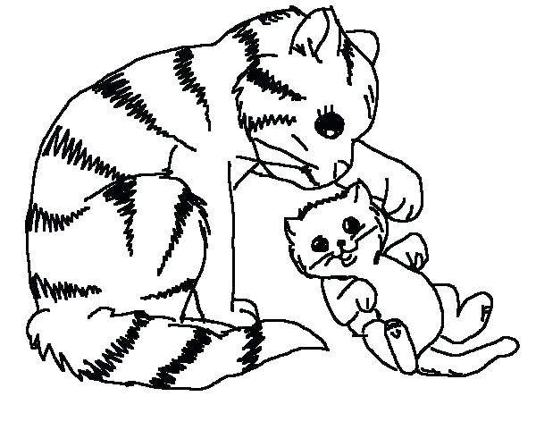 600x500 Free Coloring Pages Cats Free Coloring Pages Of Cats Free Coloring
