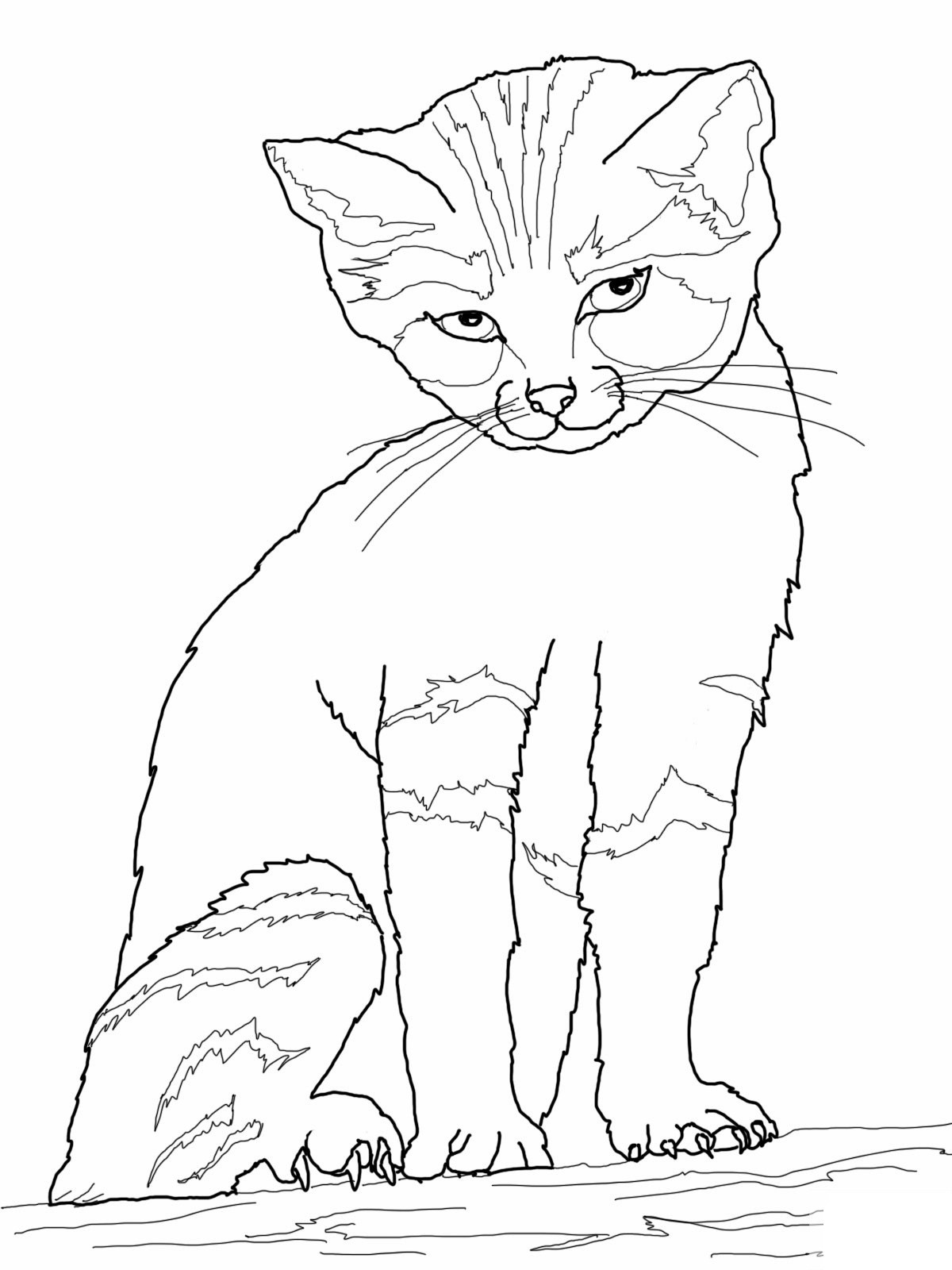 1200x1600 Free Printable Cat Coloring Pages For Kids Inside Cats Acpra