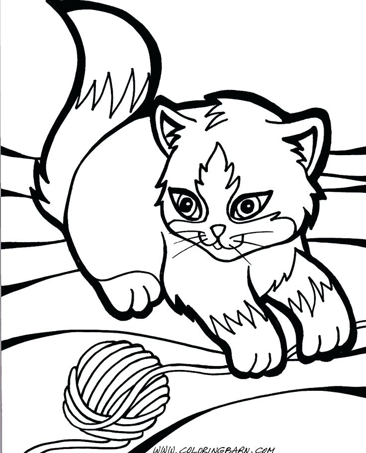736x911 Kitty Cat Coloring Pages Printable Cute Anime Simple Ideas Best