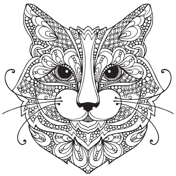 Cat Face Coloring Pages At Getdrawings Com Free For Personal Use