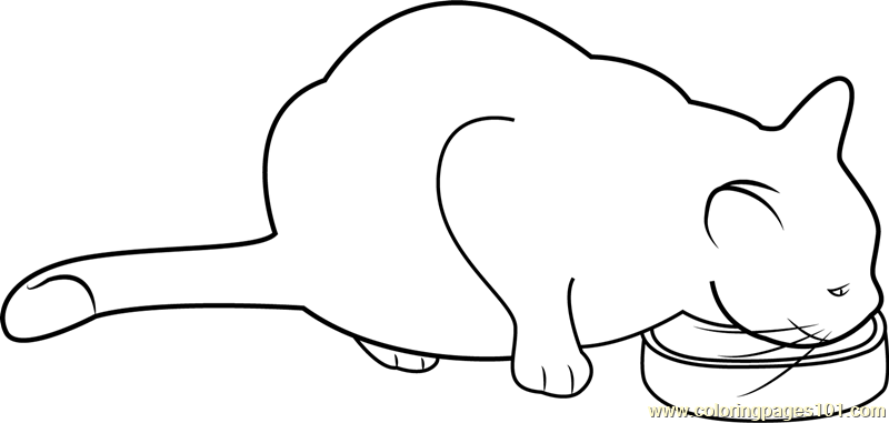 800x381 Cat Eating Her Food Coloring Page