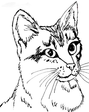 313x395 Cat Color Pages Printable Cat And Kitten Coloring Page Cats
