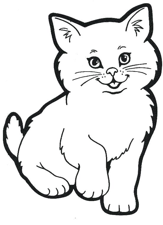 552x761 Coloring Page Cat
