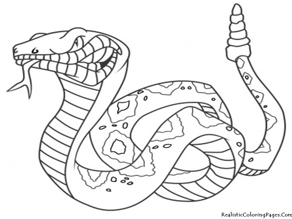 1024x768 Fire Coloring Pages Resume Ideas My Little Pet Shop Coloring Pages
