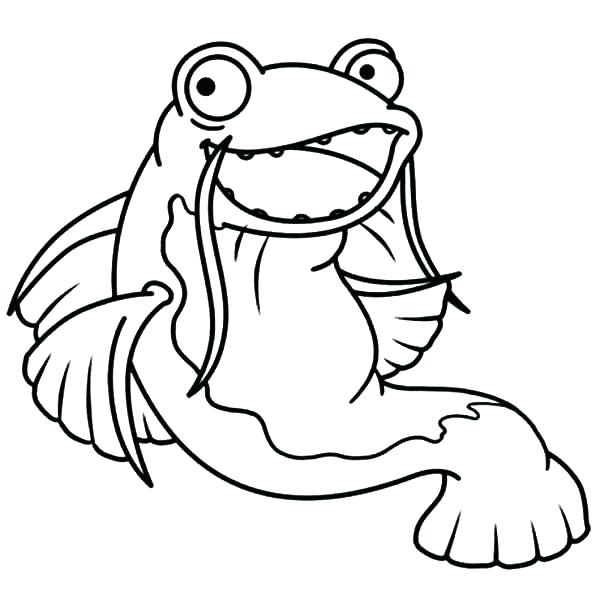 The Best Free Catfish Coloring Page Images Download From 50 Free