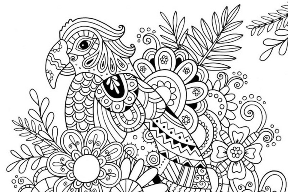 960x640 Summer Coloring Pages For Adults