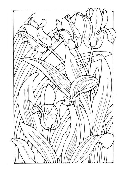 531x750 Cathedral Coloring Pages Inspirational Best Adult Coloring