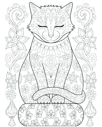 357x441 Cat Coloring Pages Fordults Big Cat Coloring Pages Face