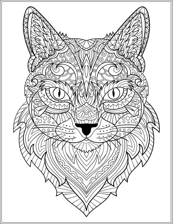 570x736 Cat Coloring Pages For Adults Simple Best Colouring