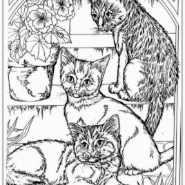 268x268 Coloring Pages For Adults Cats Archives