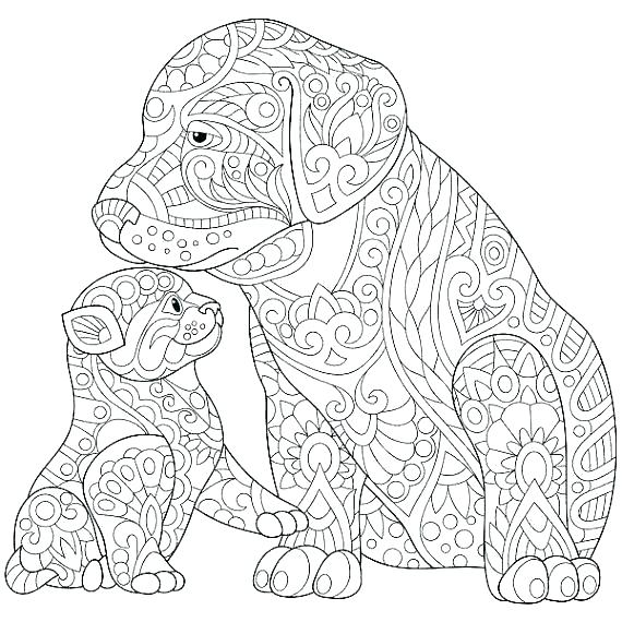 570x570 Printable Cat Coloring Pages For Adults Dog And Cat Coloring Pages