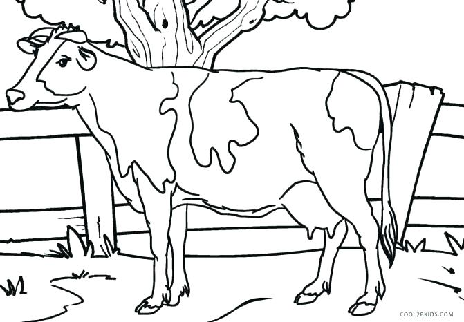 671x466 Cow Coloring Page Cute Little Cow Coloring Page Coloring Pages