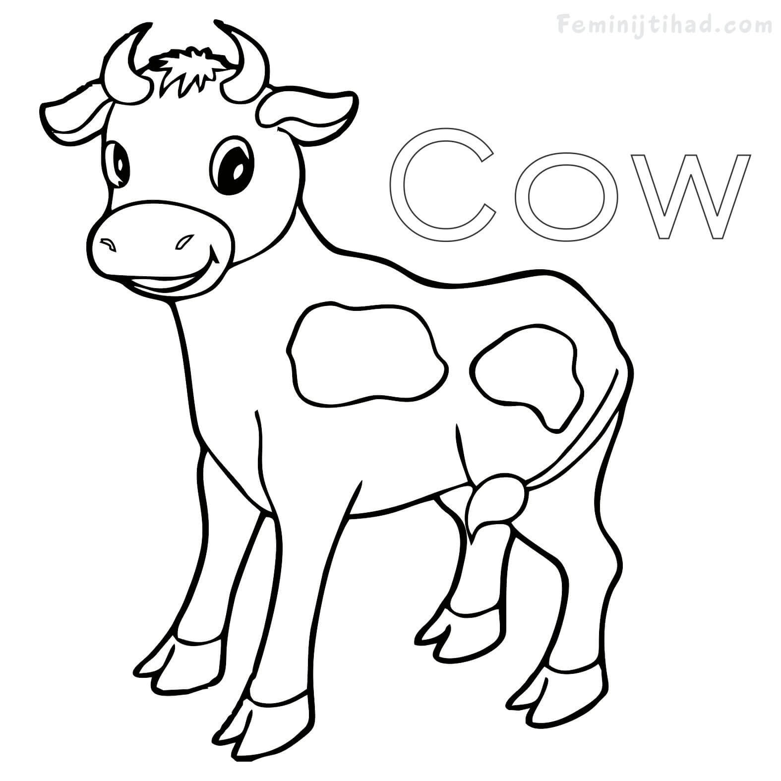1575x1575 Cow Coloring Pages Free To Print For Kids Noticeable Pictures Tixac