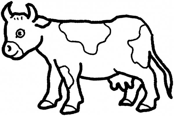 600x402 Fascinating Cow Coloring Sheets Free Printable Pages For Kids