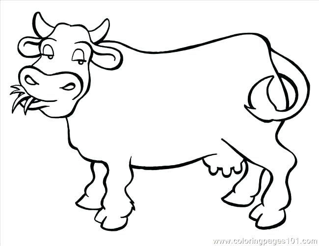 650x502 Cow Coloring Pages For Adults