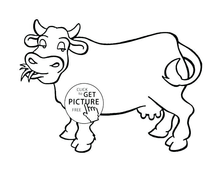 728x562 Cattle Coloring Pages Cattle Ng Pages Unique Cow Ng Pages Ideas