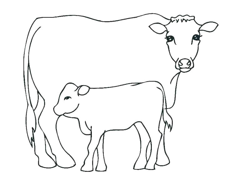 765x574 Cattle Coloring Pages Cattle Truck Colouring Pages
