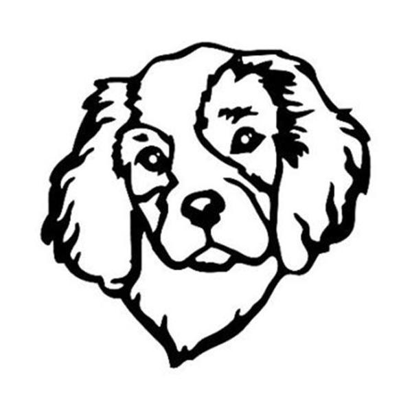 600x600 Cavalier King Charles Spaniel Car Sticker The Top Dog Deals