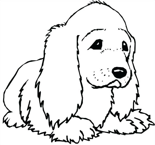 600x562 Cocker Spaniel Pages To Color Ckcs Coloring Page Yuckles Download