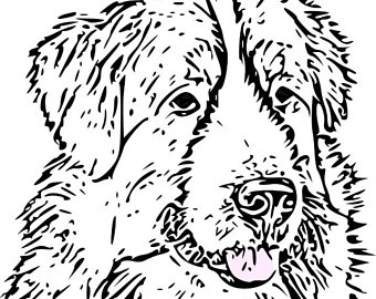 340x270 Adult Coloring Pages Cavalier King Charles Spaniel Art