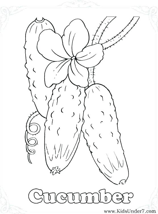 556x749 Vegetable Coloring Pages Celery Vegetable Basket Colouring Pages
