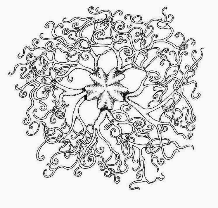 746x711 Coloring Pages For Adults Celtic Printable Free Coloring Sheets