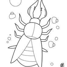 220x220 Centipede Coloring Pages