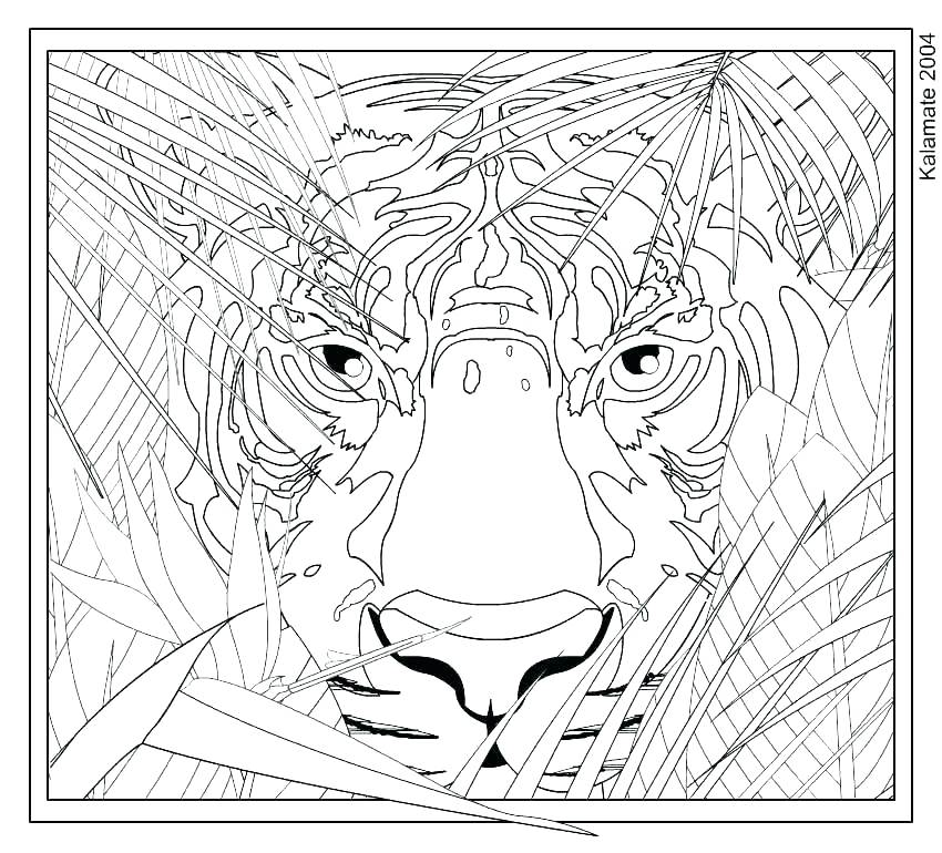 850x770 Challenging Coloring Pages Challenging Coloring Pages For Adults