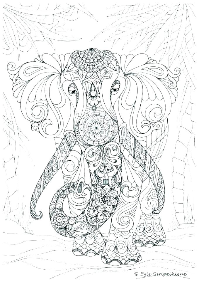 679x960 Challenging Coloring Pages Difficult Challenging Animal Coloring