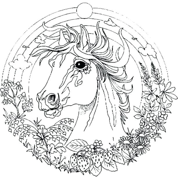 618x611 Challenging Coloring Pages Various Adult Coloring Pages Printable