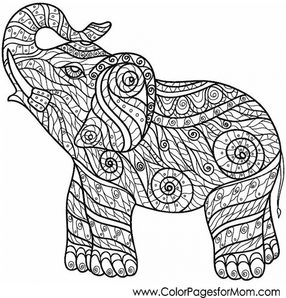 919x960 Get This Challenging Coloring Pages Of Elephant For Adults