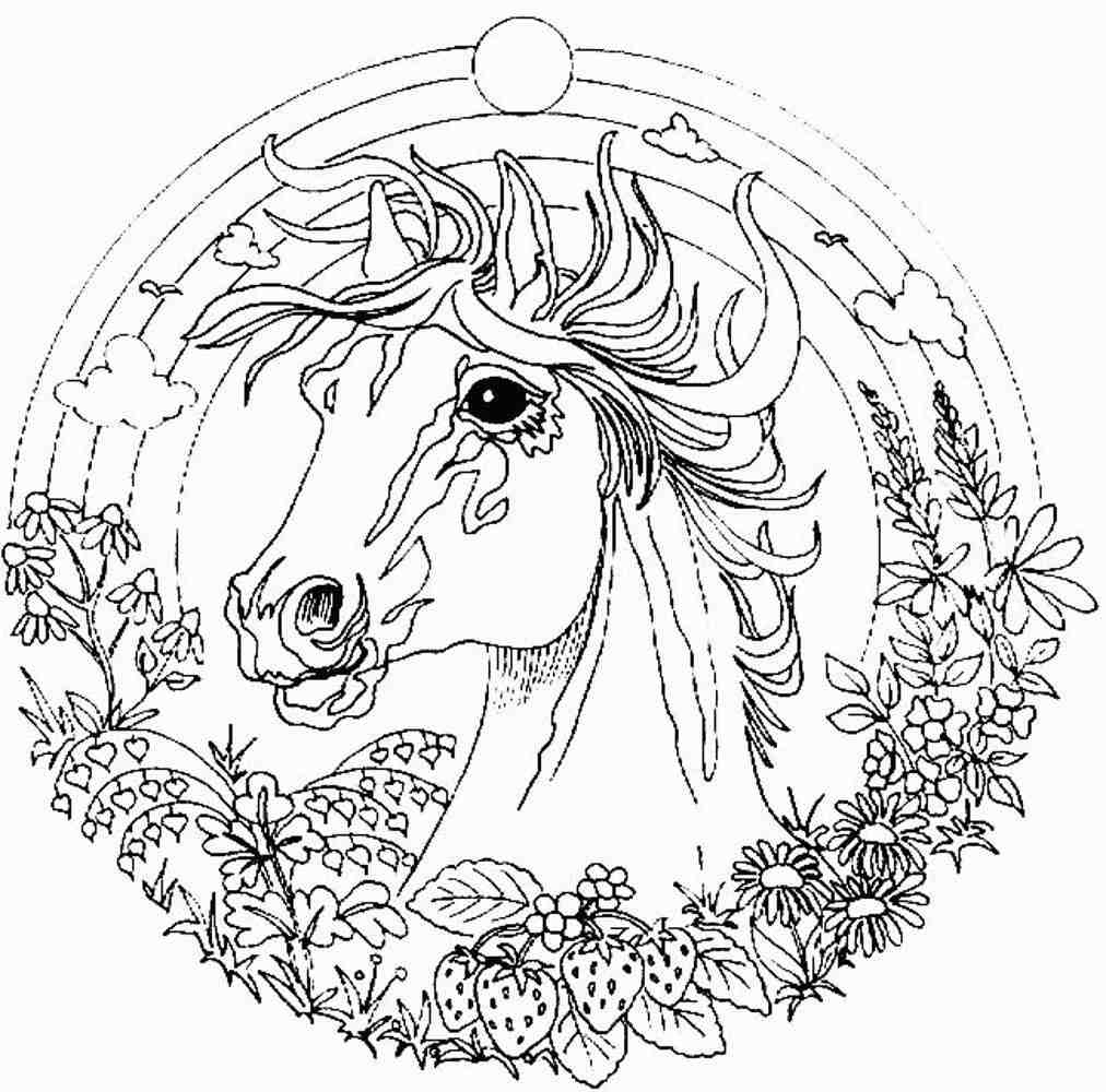 1012x1000 Challenging Coloring Pages Discover All