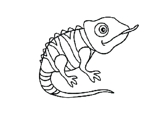600x535 Chameleon Coloring Page Chameleon Coloring Animals Pascal