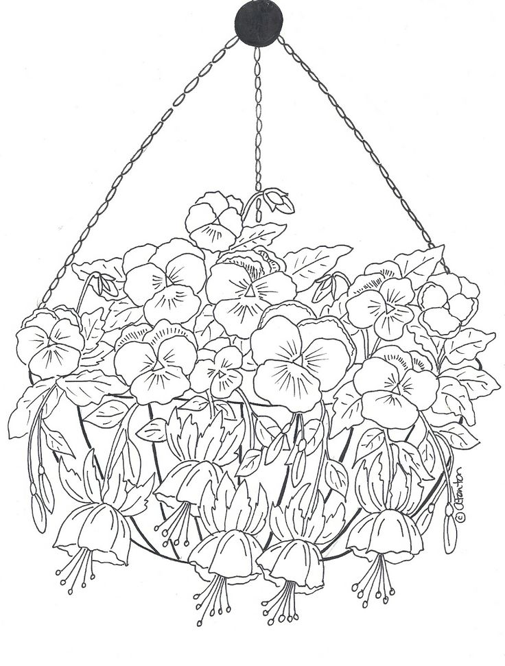 736x971 Best Fleurs Images On Draw, Print Coloring Pages