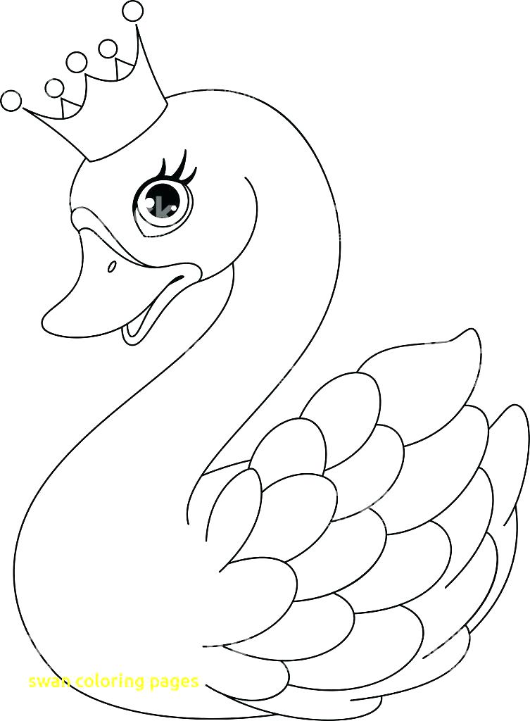 753x1024 Swan Pictures To Color