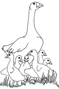 236x355 Goslings In The Barn Coloring Pages