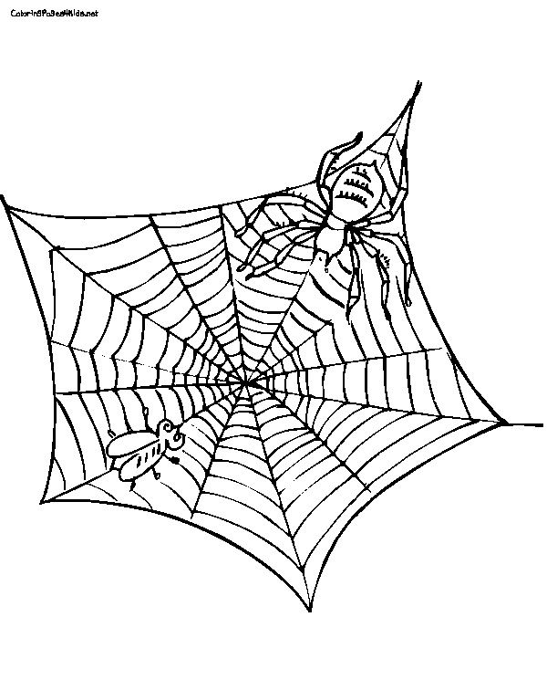 600x756 Charlotte's Web Free Printable Coloring Pages Sonlight Core B